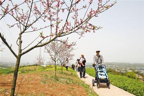 春天去哪儿耍? 《重庆主城春游地图》告诉你