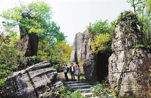 南川山王坪喀斯特国家生态公园五