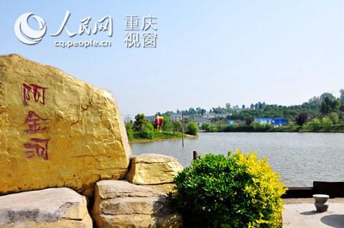 忠县以橘为媒 发展特色乡村生态旅游