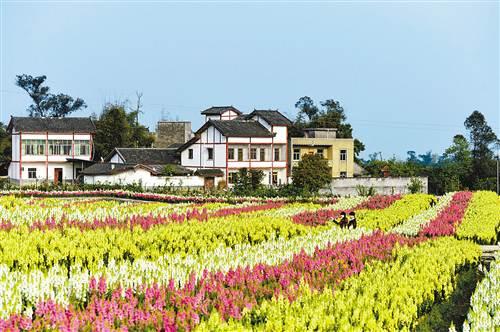 永川:乡村旅游提档升级