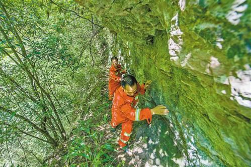 """阴条岭护林员 过著""""野人""""般生活守护著12万亩森林"""