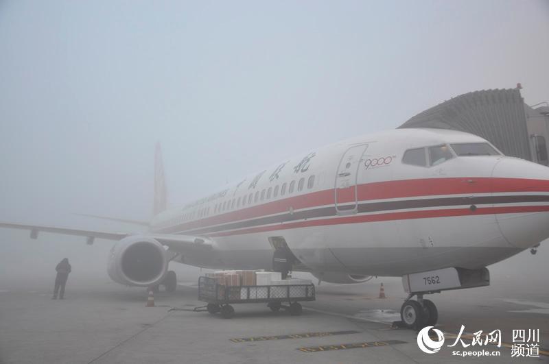 成都机场因浓雾天气将航班延误预警升至红色 近年来首次