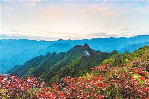 酉阳板溪红叶.(资料图片)黄德权 摄