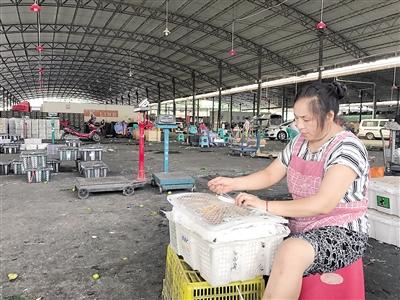 准备搬迁的观农贸盘溪水果批发市场.