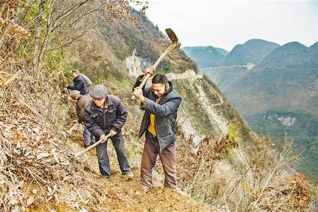 通往巫山老鷹村的道路十分險要。這條全長18.8公裡的村級公路,還有100米沒有修通。  12月11日,劉典元騎著摩托車通過杜家灣洞子。  12月11日,巫山官陽鎮老鷹村象鼻子崖,工人在開鑿施工便道,他們希望在兩個月內打通這條路。(本組圖片均由記者謝智強攝)   他,為了幫助村民脫貧,主動請纓修路,一修就是17年   他,為了修路四處化緣,交通局、農委、扶貧辦的門檻都快被他踏平了   他,帶領村民用鋼钎和鐵錘挖隧道,打炮眼、填炸藥,甚至連蒙帶騙請來包工頭接活兒   一條18.