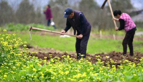 春暖农事忙