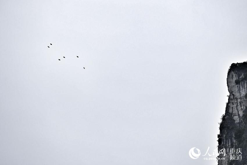 在天空,翼装飞行运动员就像一个个小点。罗嘉 摄