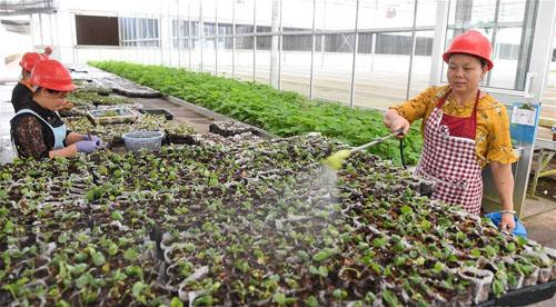 生态产业助脱贫