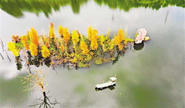 重庆:青山湖秋色美