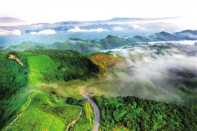 http://www.fanchuhou.com/shehui/889773.html