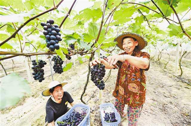 重庆人有了更多获得感、幸福感、安全感
