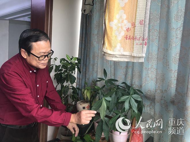 http://www.house31.com/fangchanzhishi/45577.html