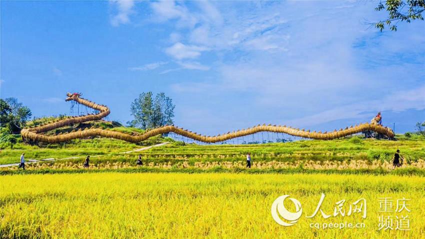 梁平203.19米长巨型草把龙。梁平区委宣传部供图