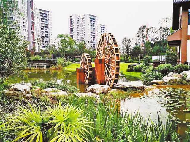 【大学生社会调查报告范文】潼南區人民生態公園獲可持續城市和人居環境獎