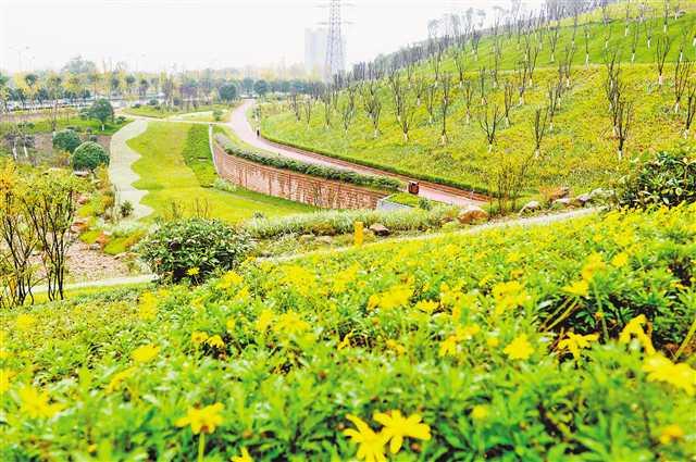 http://www.hjw123.com/shengtaibaohu/58376.html