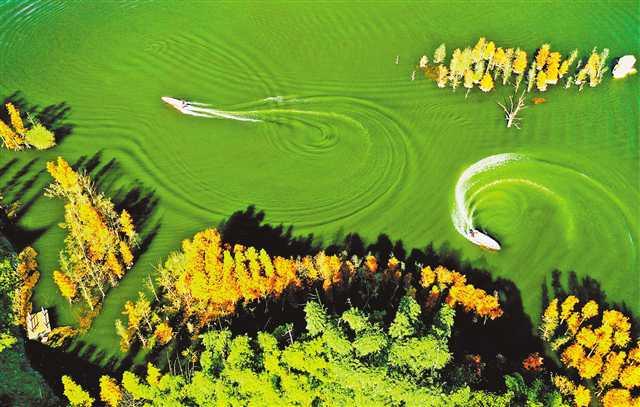 湿地公园画中游