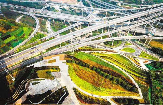城市闲置地变绿地花海