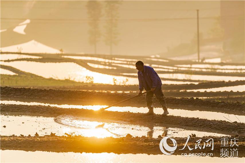 5月2日,重庆市南川区石溪镇盐井村村民在朝阳下忙碌。瞿明斌 摄