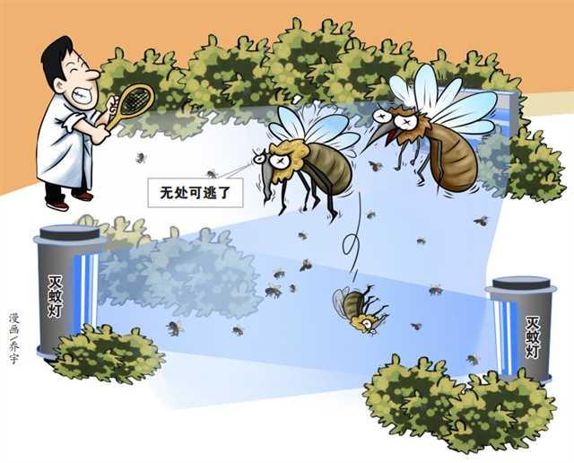 重庆开展的病媒生物防制 今年的蚊子比去年少