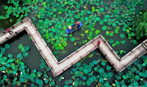 浙江长兴:清洁水面 扮靓乡村